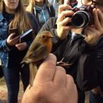 Birdswatching 3 ornitologická stanice u moře